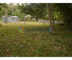 Land for sale in Kurunegala- Mallawapitiya