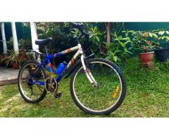 12 Speed Bicycle for Sale