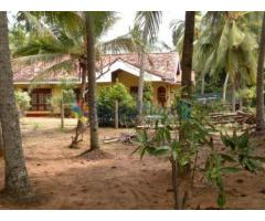 Land For Sale - Hambantota