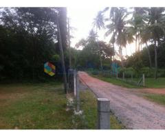 Negombo - Land 200p