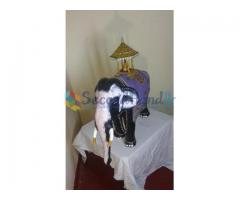 Fiber elephants-house warming gift item-Good luck symbol