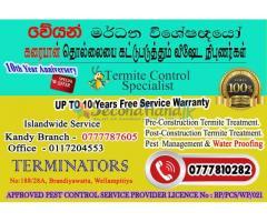 Termite & Pest Mangement