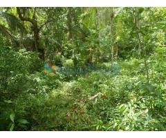 Good Investment Opportunity Land from Habaraduwa